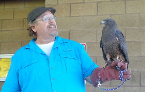 A man from Hawk Watch is holding a falcon and showing team Freyja students