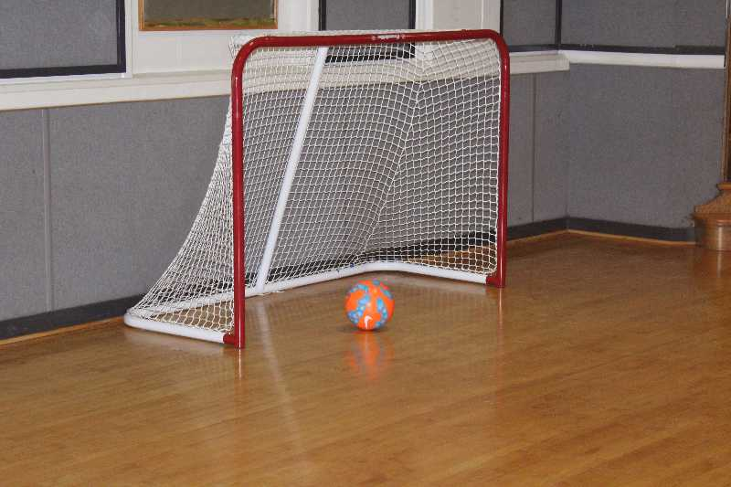 A ball is sitting on the goal line about to cross into the goal and score.