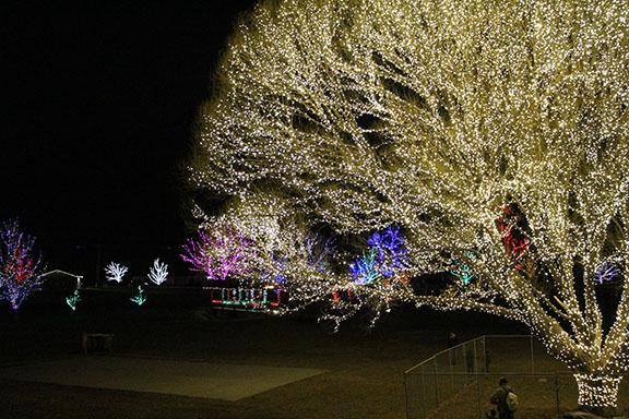 A shot of the Tree of Life with all of the pretty lights behind it, taken Dec. 3 at Draper Park.