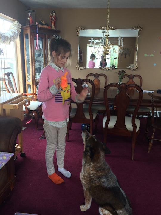 Sammy Helzer is teaching a dog to sit in Draper March 12, 2016.