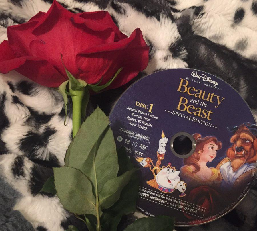 This is a picture of a rose and the original Beauty and the Beast DVD. The new live-action remake will be coming to theatres soon. This was taken on February 24, 2017.