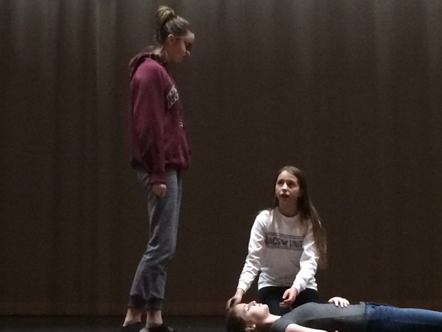February 23, 2017 Whitney Lang, Summer Hall and Holly Nichols perform their scene in Productions Company, in the DPMS auditorium.