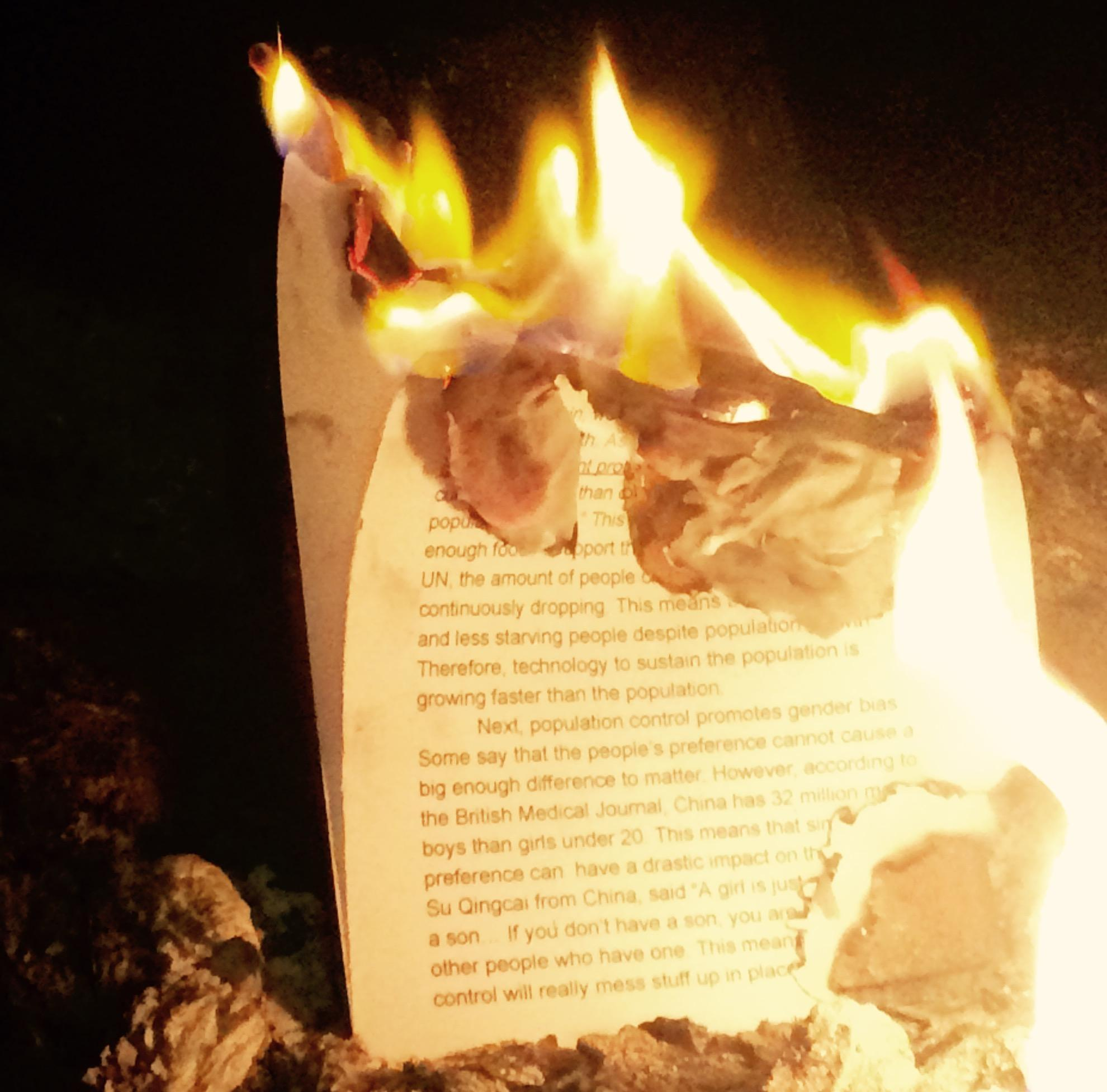 In some instances books are banned as well as burned.